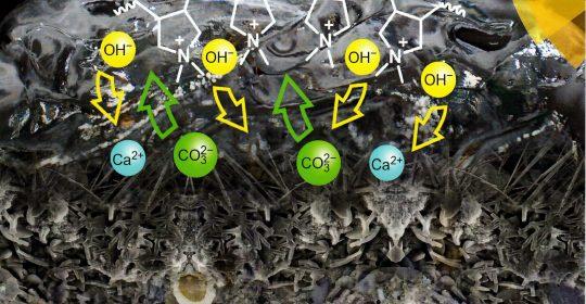 Highly alkaline Hydrogels for Re-Alkalisation